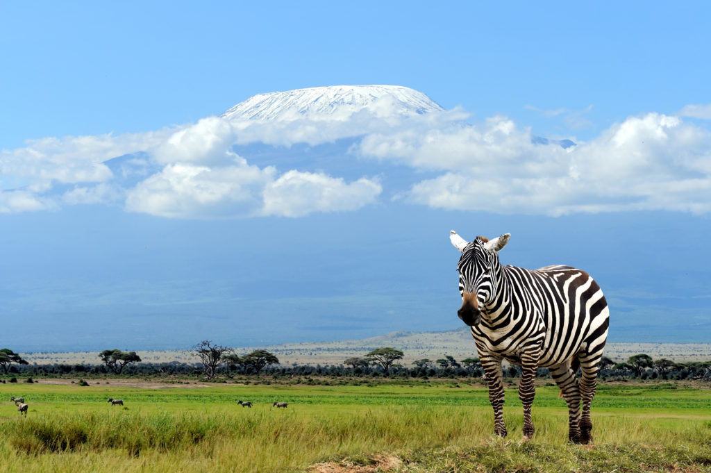 africa, tanzania, kbtambo, kbtambo tours, kb tambo tours, kb tours, african safari, africa safari, safari africa